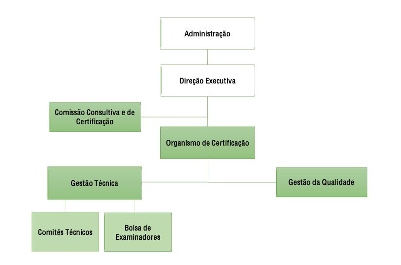 Organigrama do OC da AQTSE